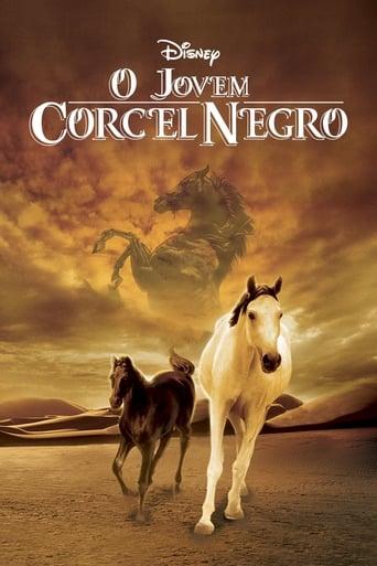 Assistir Young Black Stallion online