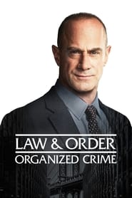 Assistir Lei e Ordem: Crime Organizado online